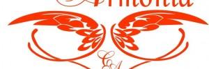 centro de la armonia estetica | cosmetologia en 25 de mayo 511, venado tuerto ,