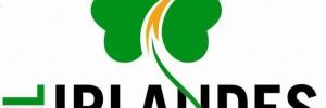 el irlandes futbol deportes | canchas | piletas | privadas en santa fe 1651, venado tuerto, santa fe