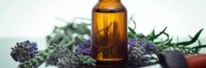 flores de bach salud | terapias alternativas en salta y caseros, venado tuerto, santa fe
