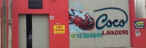 lavadero coco automotores | servicios en españa 1527, venado tuerto, santa fe