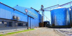 molinos alejo ledesma s.r.l. alimentos | fabricacion en ruta acceso ledesma 554, alejo ledesma, cordoba