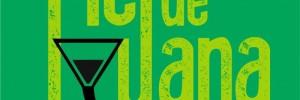 piel de iguana fiestas eventos | contrataciones en brown 1865, venado tuerto, santa fe