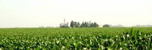 suelo sano agro | insumos en cordoba 355, maria teresa, santa fe
