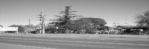 el forestal maderera  ruta 8 km 364.5, venado tuerto , santa fe, argentina