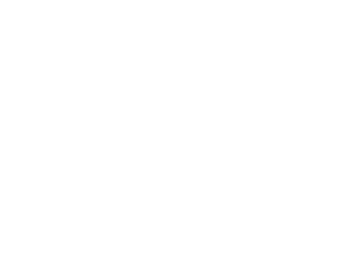 GRAN ASADOR LA TRANQUERA